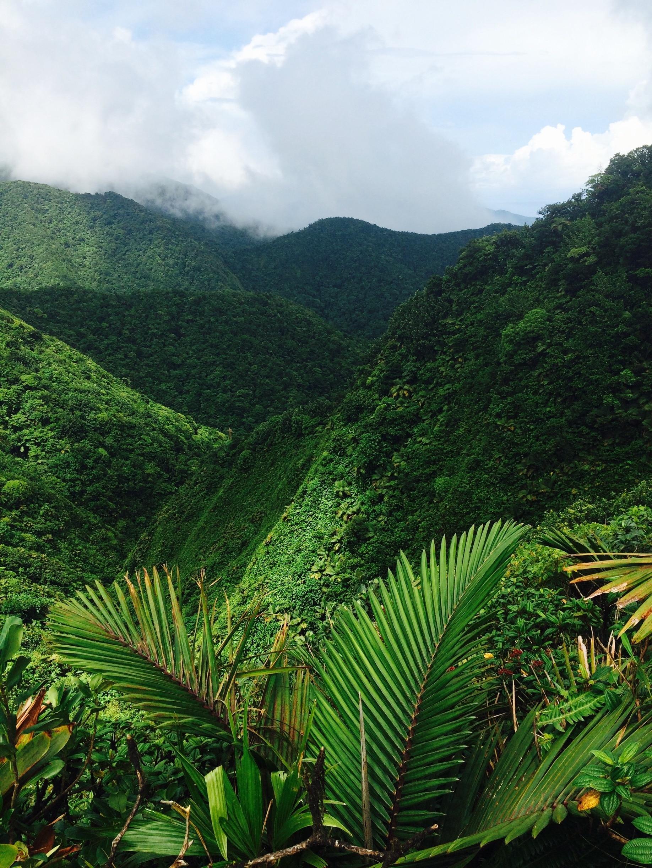 Saint Joseph Parish, Dominica