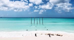 Druif Beach (strönd)