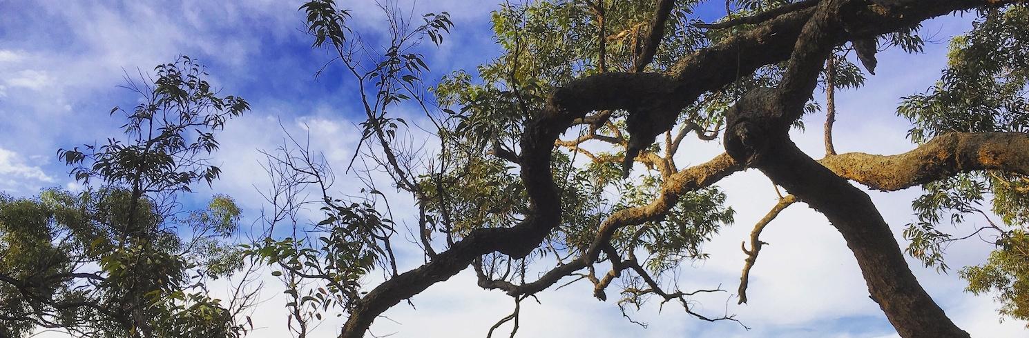 Sydney, Új-Dél-Wales, Ausztrália