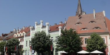 Sibiu is one of the most important cultural centres of Romania and was designated the European Capital of Culture for the year 2007, along with the city of Luxembourg. Formerly the centre of the Transylvanian Saxons, the old city of Sibiu was ranked as