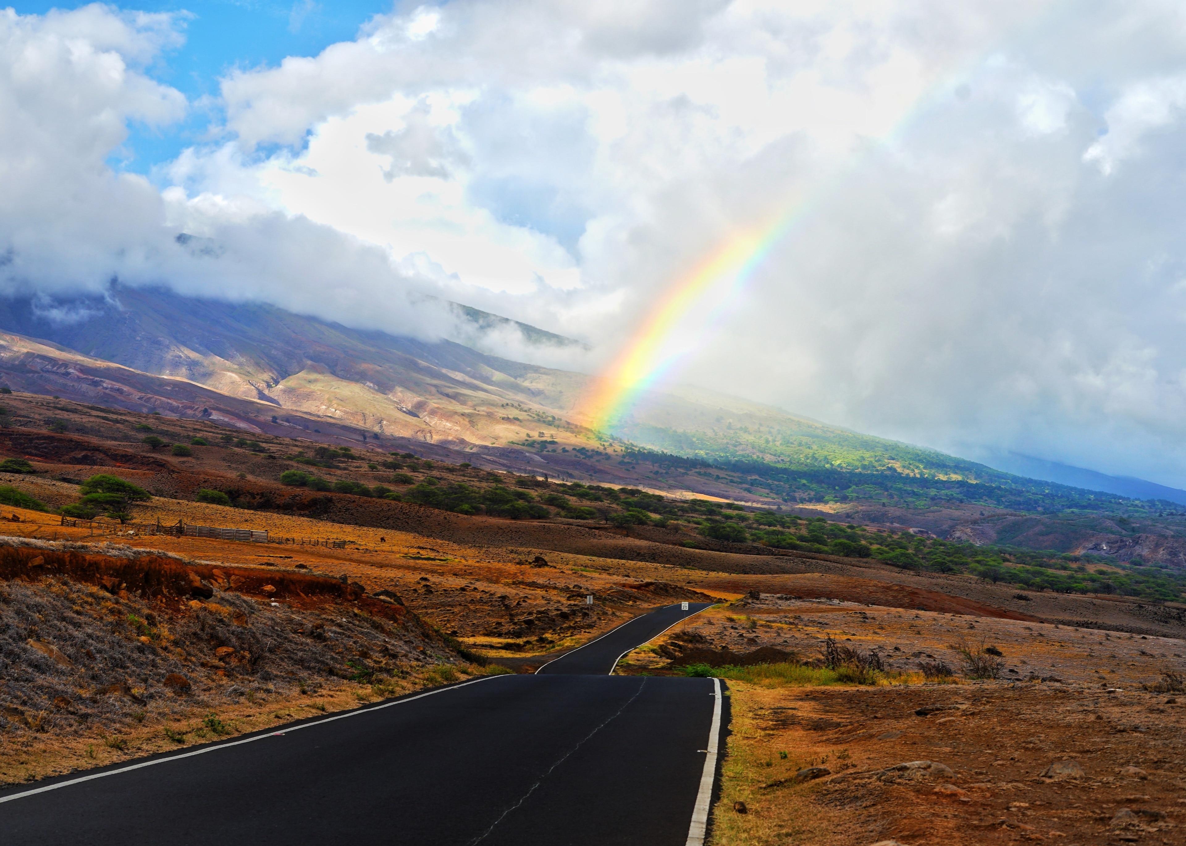 Kahikinui Forest Reserve, Kula, Hawaii, United States of America