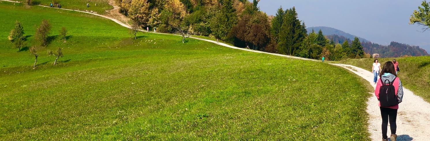 Medvode, Slovenya