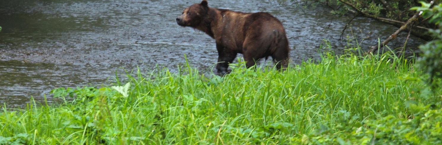 Hyder, Alaska, United States of America