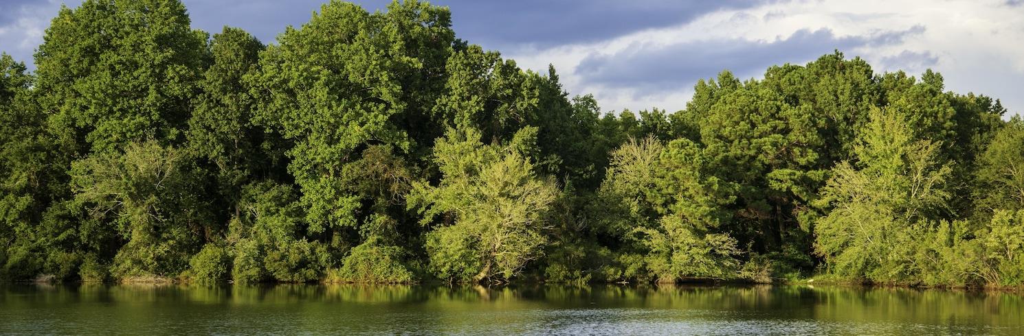 Dillon, South Carolina, Verenigde Staten