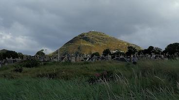 Norsbervikas