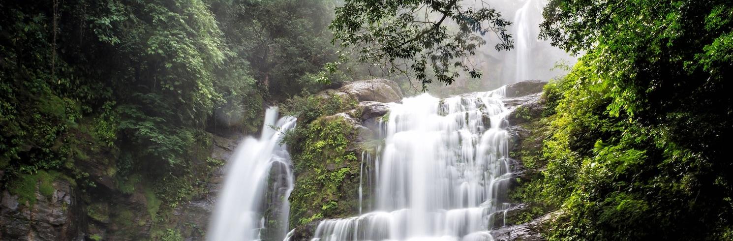 도미니칼(및 인근 지역), 코스타리카