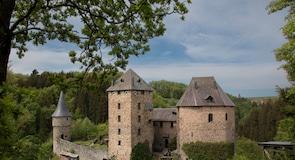 Замок Райнгардштайн