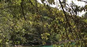 Lake Cornino Regional Nature Reserve