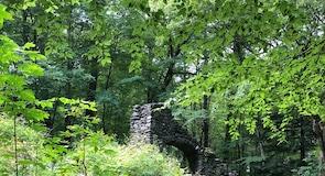 พื้นที่อนุรักษ์ธรรมชาติ Madame Sherri Forest