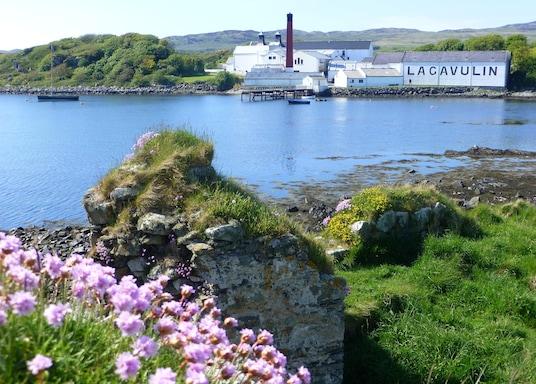 Острів Айлей, Великобританія