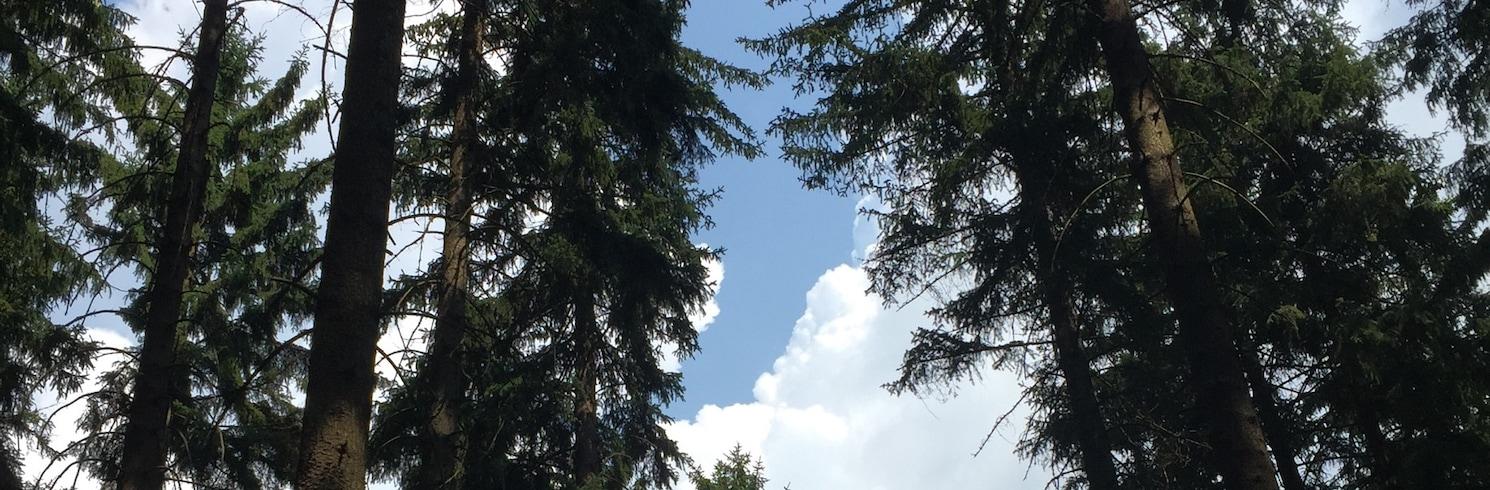 Jablonec nad Nisou, Tšehhi Vabariik