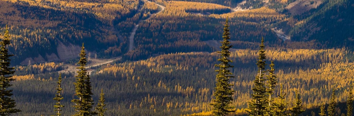 Essex, Montana, Stany Zjednoczone