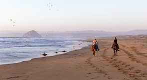 Morro Dunes Doğa Koruma Alanı Plajı