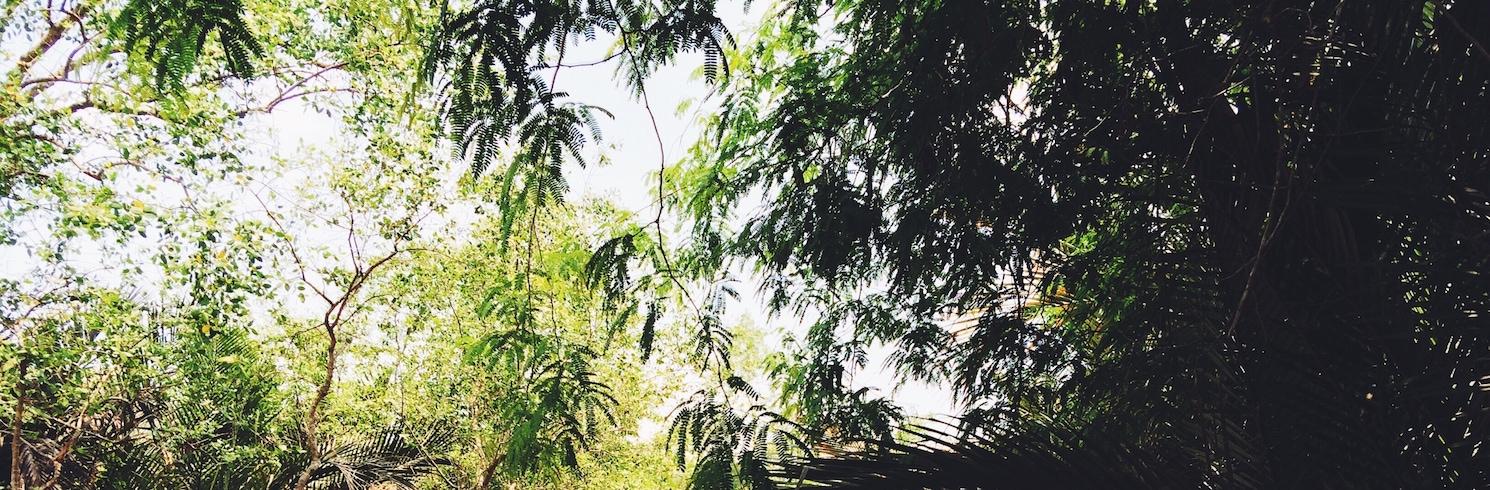 Cu Lao Dung, Vjetnama