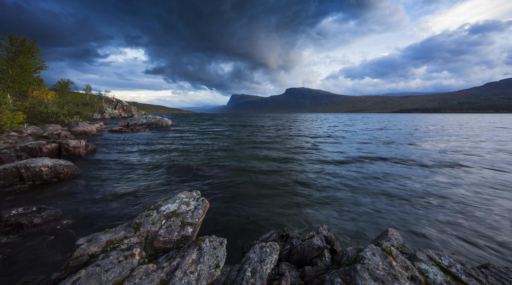 Kuva: Fredrik  Signarsson
