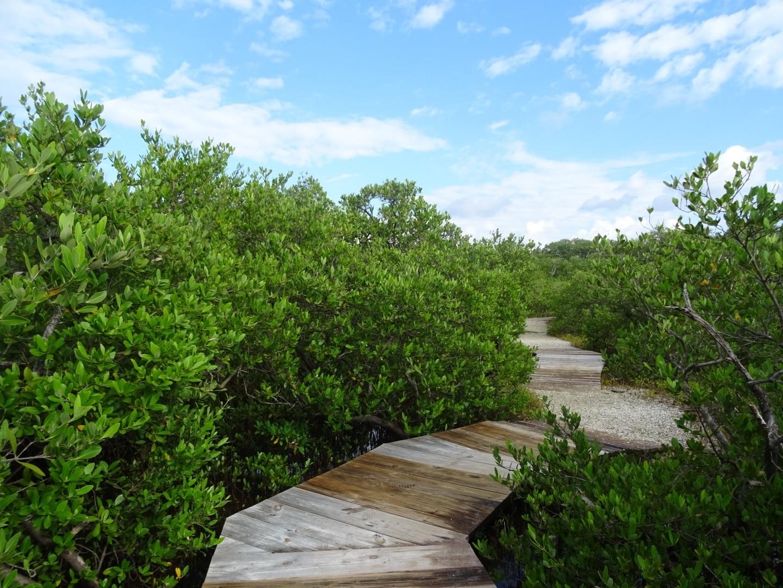 Anna Maria Island, Florida, United States of America