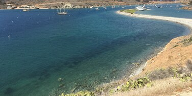 On the west side of Santa Catalina Island, this harbor requires a bit more effort to reach. The payoff is a remote location with elbow room. A half mile walk takes you into Two Harbors but you are otherwise in a different world.