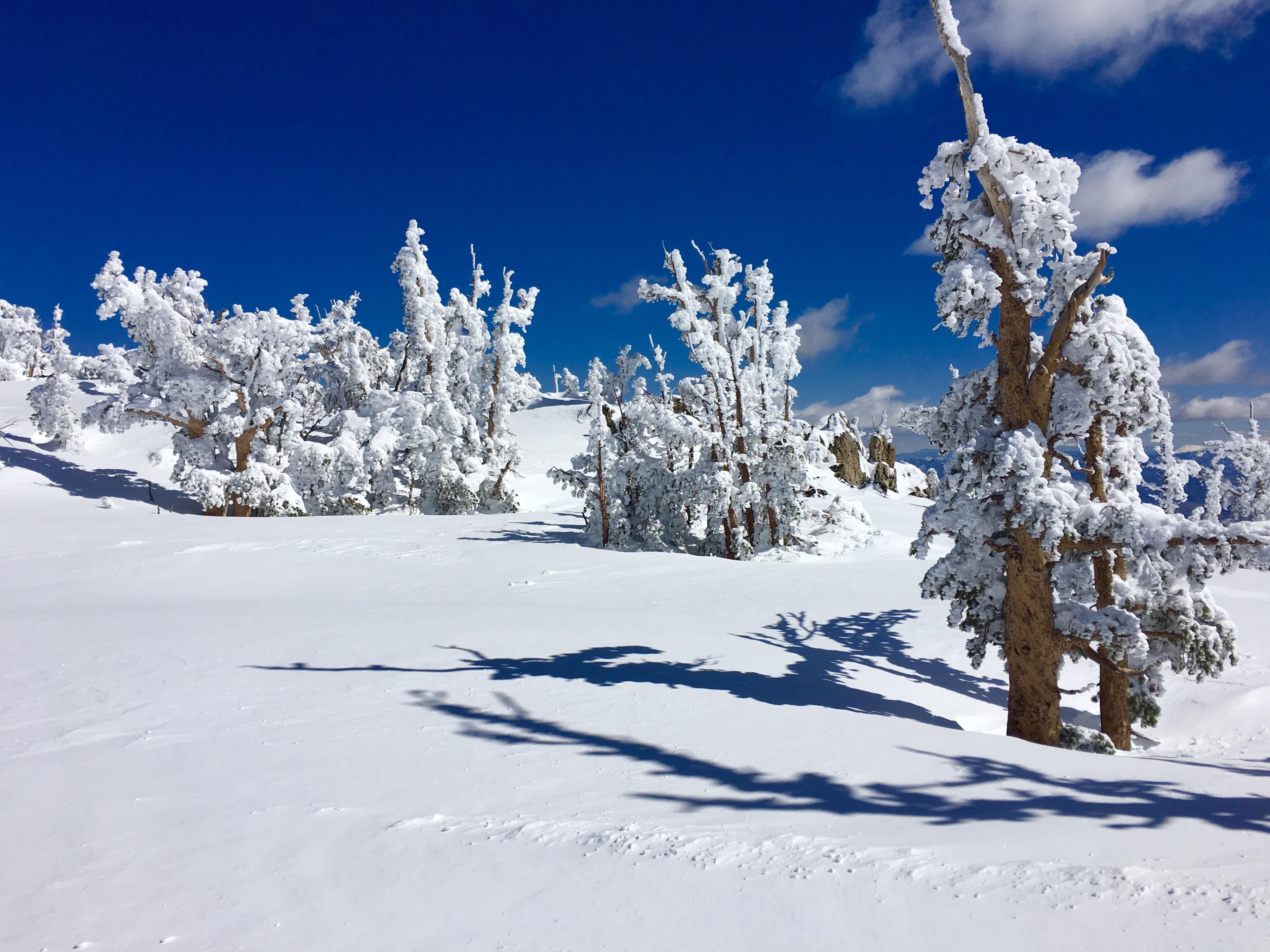 Mt. Rose Ski Tahoe, Reno, Nevada, United States of America