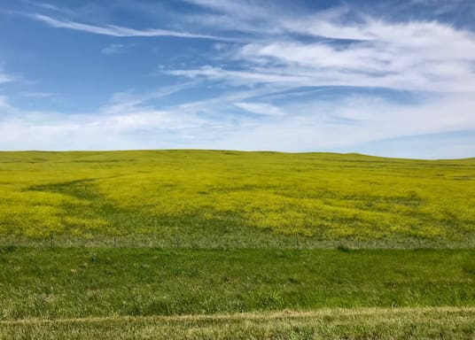 Belle Fourche, Dakota del Sur, Estados Unidos
