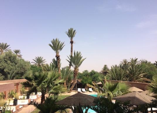 Tarmigta, Maroka