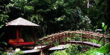 Payangan, Bali, Indonesia