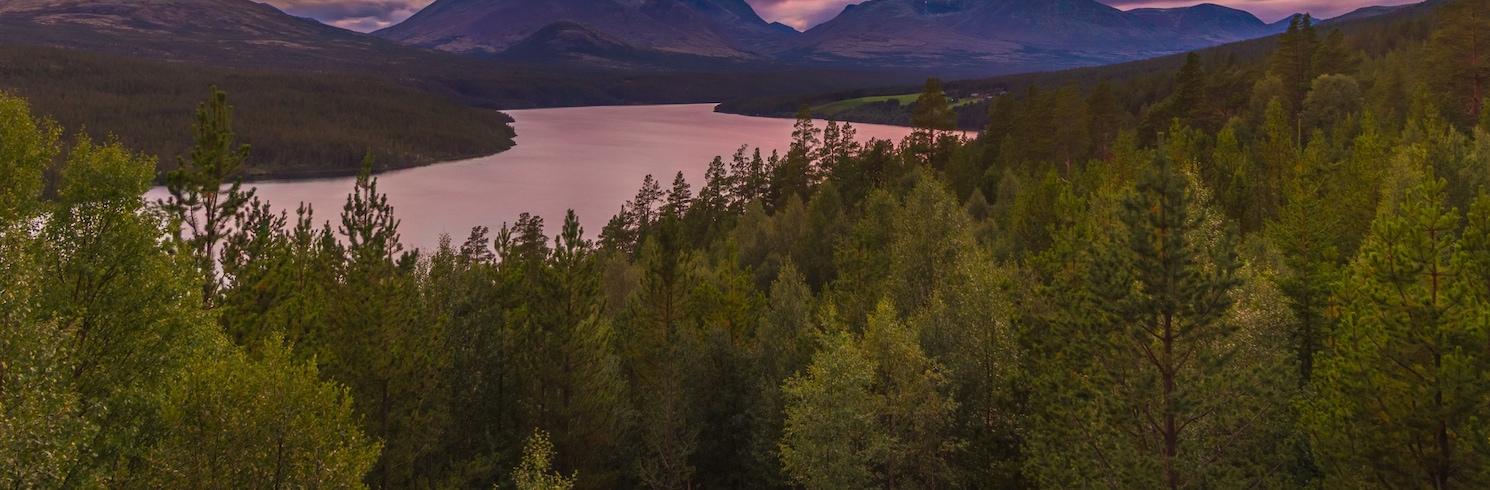 Stor-Elvdal, Norveç