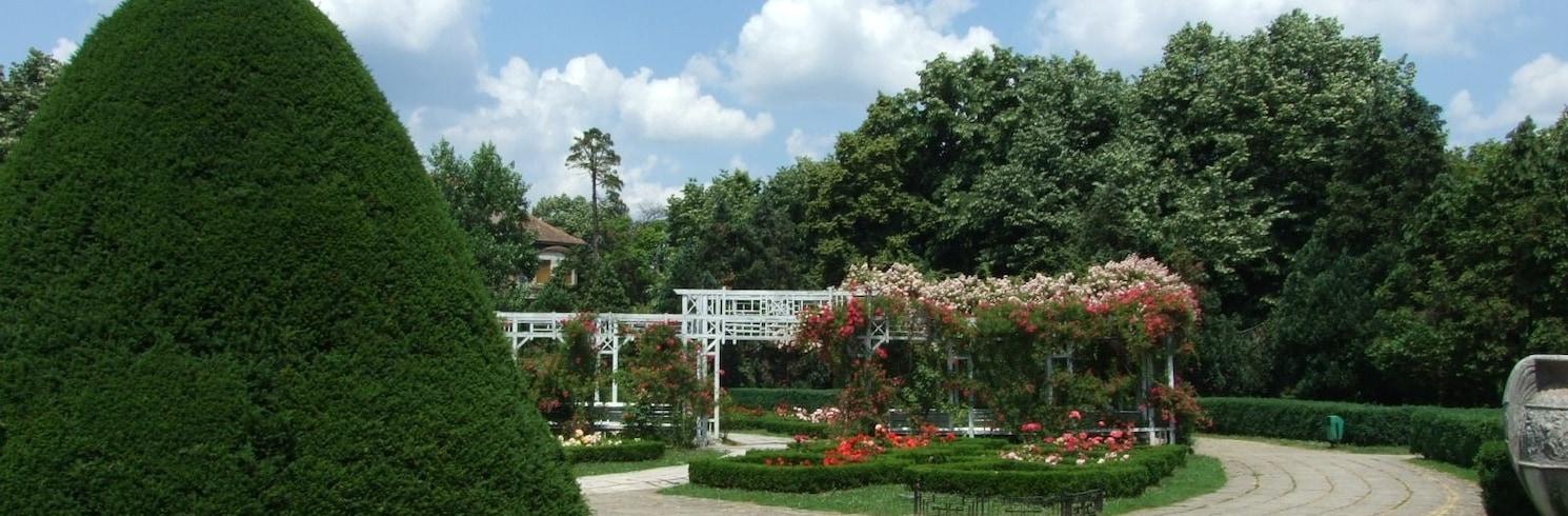 Timisoara, Rumanía