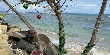 Holiday Beach 🏖 spirit