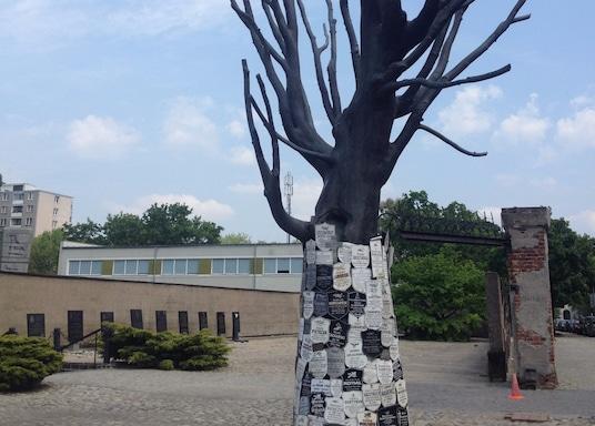 Varšuva, Lenkija