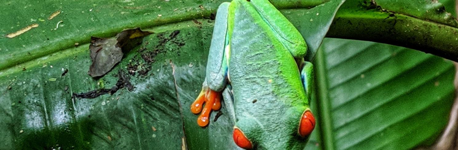 Bijagua, Kostaryka