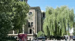 فيتوشكا بوليفارد