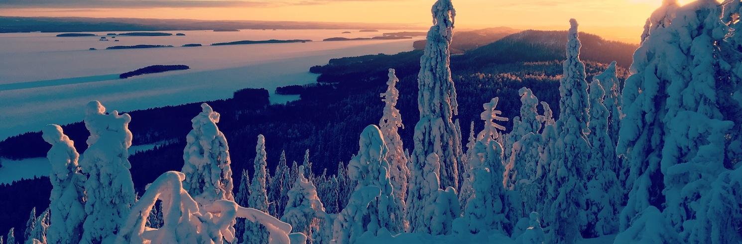 Lieksa, Finlandiya