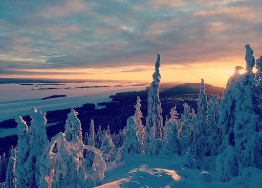 Ylä-Koli, Finland