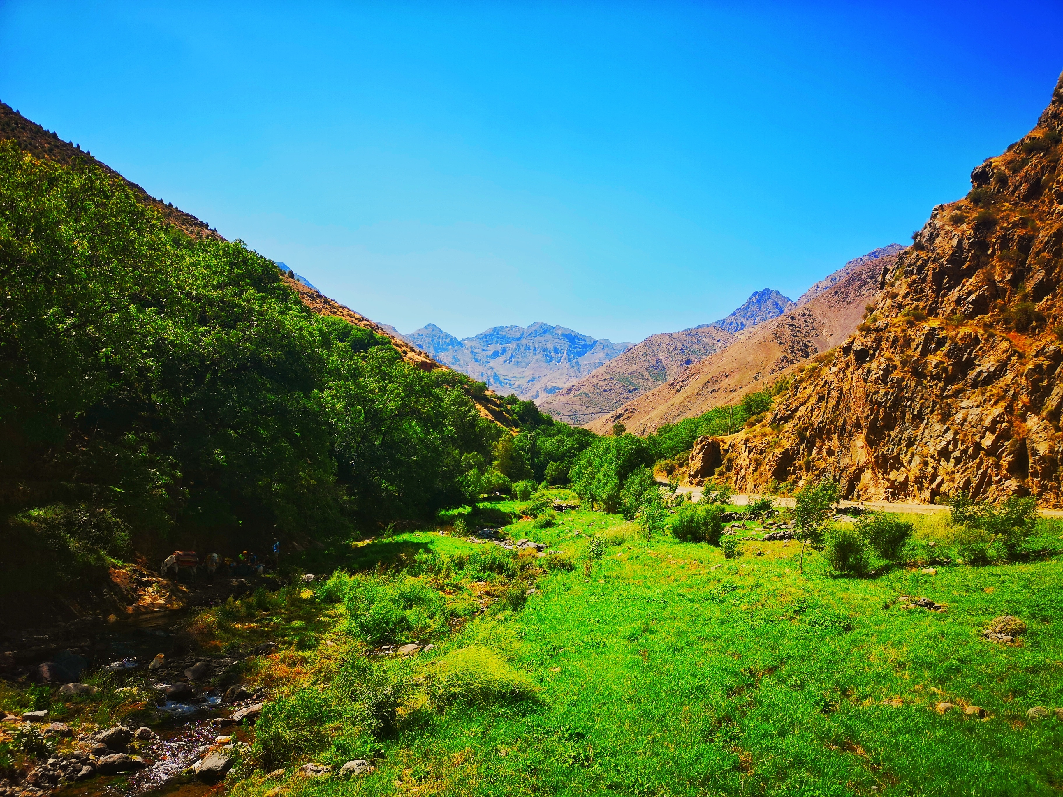 Toubkal National Park, Marrakech-Safi, Morocco