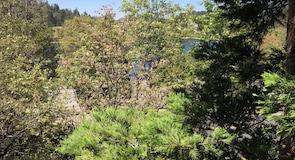 Региональный парк Лейк-Грегори