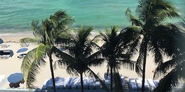 南荷里活中央海灘, 荷里活, 佛羅里達, 美國