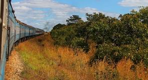 Chiawa looduskaitseala