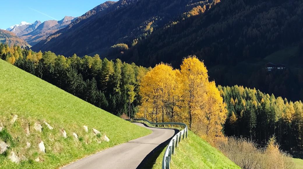Visita Valle Aurina: El mejor viaje a Valle Aurina, Schwaz ...