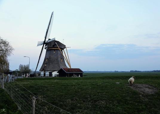 De Ronde Venen Belediyesi, Hollanda
