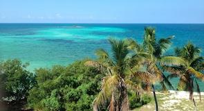 Bahia Honda Eyalet Parkı and Plajı
