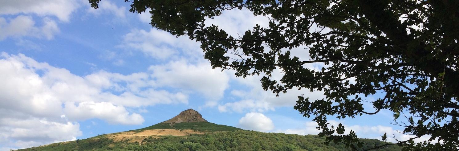 Newton Under Roseberry, Jungtinė Karalystė