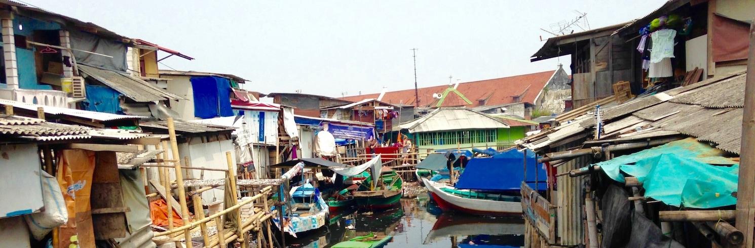 Cempaka Putih, Indonesia