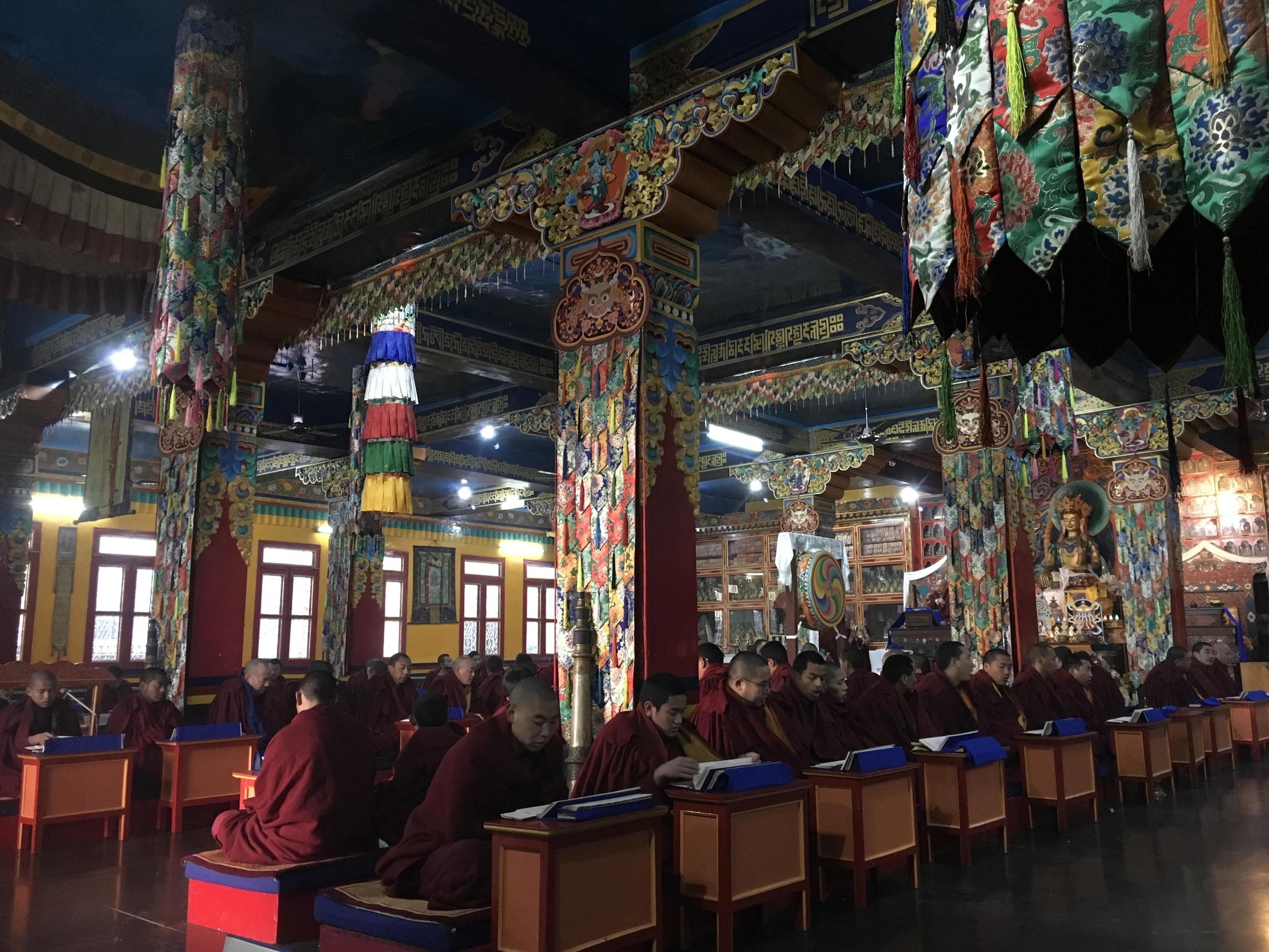 Pachhad, Himachal Pradesh, India