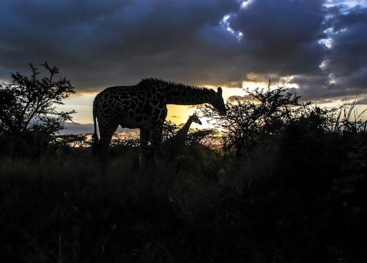 Nairobi, Kenýa