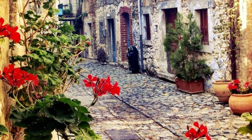 Foto von Erdem Yücel