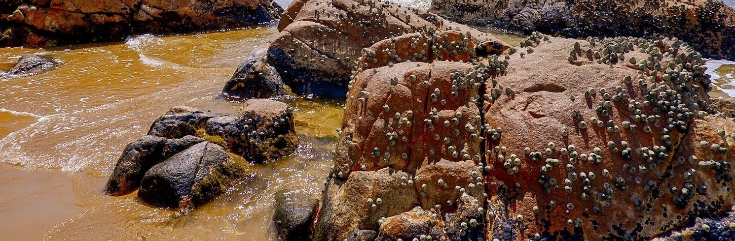 Eurimbula, Queensland, Australija