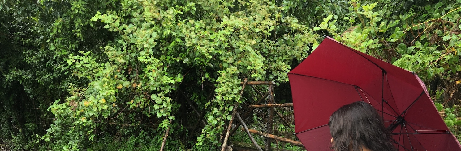 Kannan Devan Hills, India