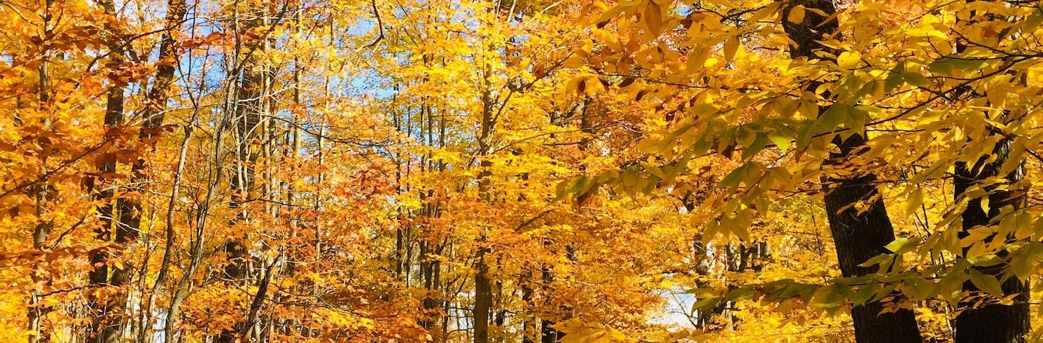 Hawes Township, Michigan, Birleşik Devletler