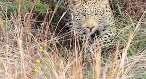 威尔格芬登野生动物保护区