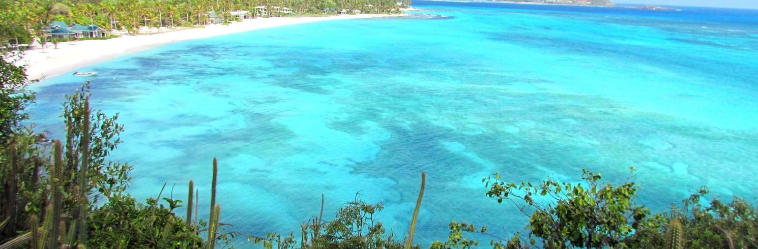 Pulau Palm, Saint Vincent Dan Grenadines